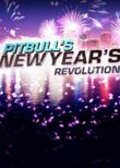 Pitbull's New Year's Revolution