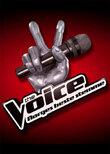 The Voice – Norges beste stemme